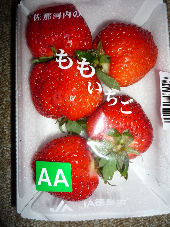 a0157156_11354430.jpg