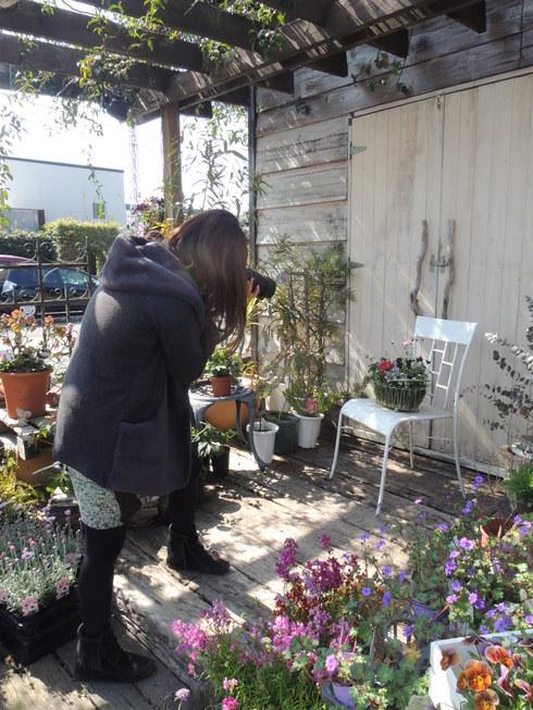 今日は地元新聞社、生活情報誌、春のガーデニング特集の    取材_b0137969_1524748.jpg