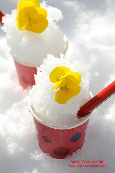 雪のシャーベット_b0308096_17123524.jpg