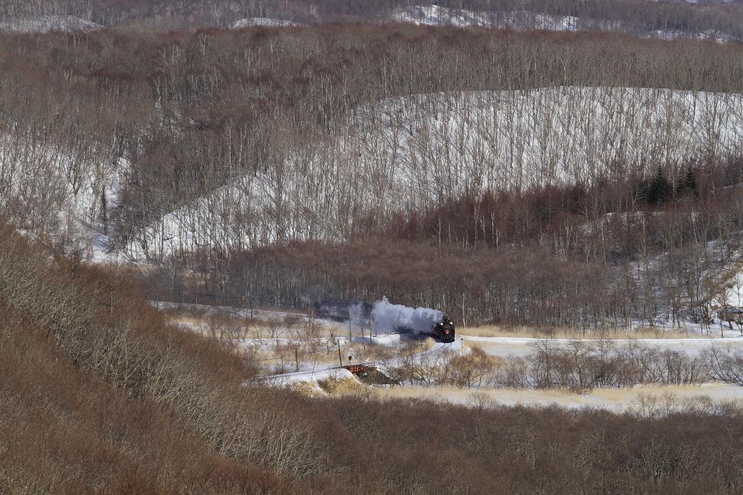 二つ目が光る - 2014年冬・釧網線 -  _b0190710_656061.jpg