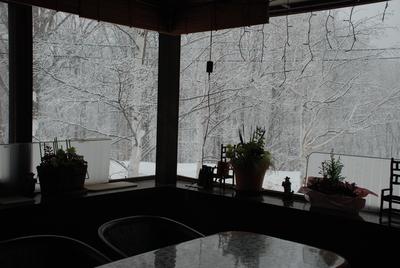 25日  火曜   雪  1度_f0210811_14461292.jpg