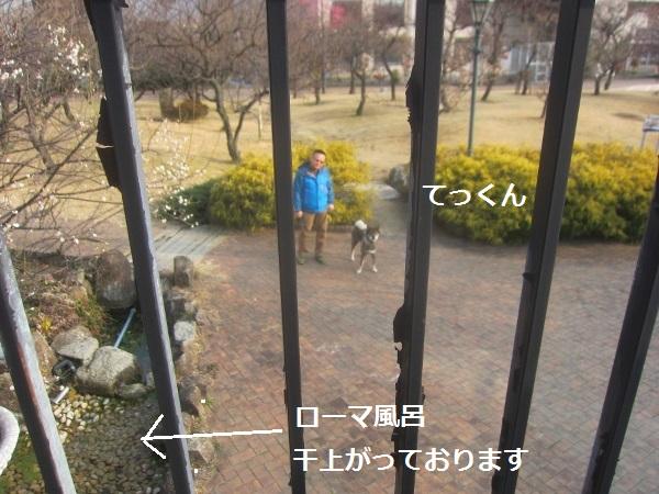 f0143123_2003510.jpg