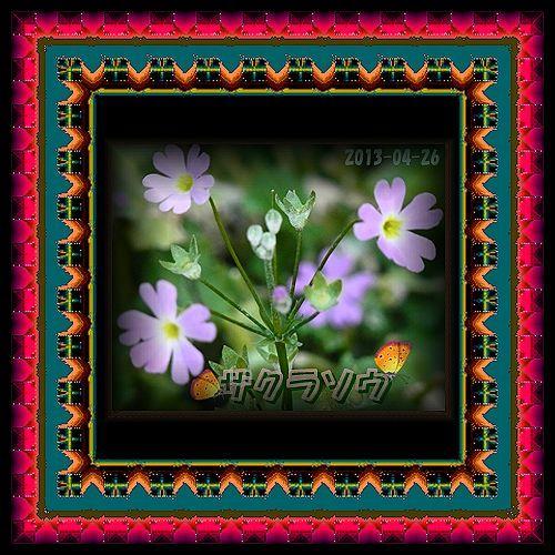 b0133752_10155847.jpg