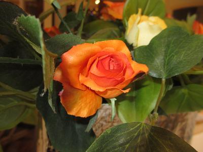 f0113862_15516100.jpg
