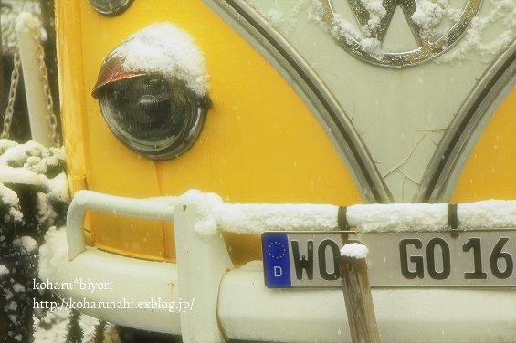 吹雪の川越っ!!_f0299486_1938857.jpg