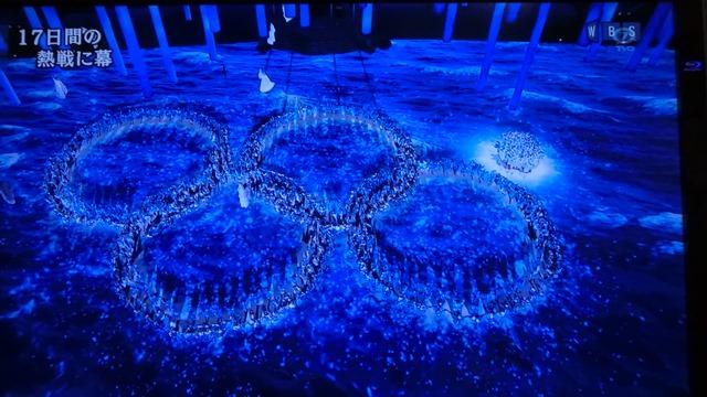 夢と希望をありがとうソチ冬季オリンピック日本選手の皆様へ、ロシア国民の皆様に心より感謝します_d0181492_813931.jpg
