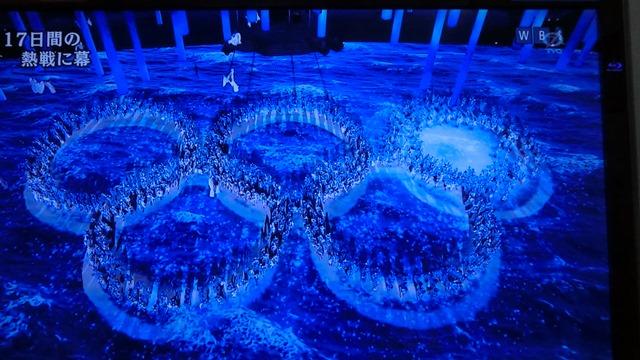 夢と希望をありがとうソチ冬季オリンピック日本選手の皆様へ、ロシア国民の皆様に心より感謝します_d0181492_814974.jpg