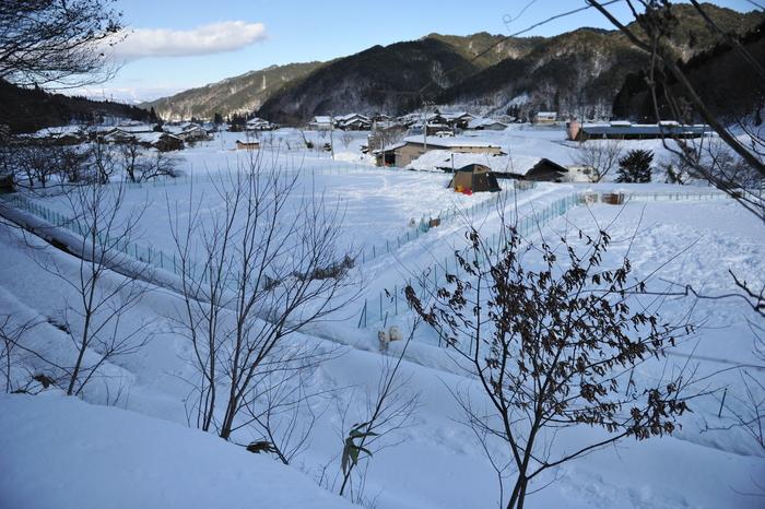雪中キャンプ in WAN-WA 第2弾 PART2_a0049296_20445783.jpg