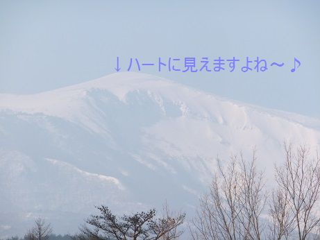 f0179203_184048.jpg