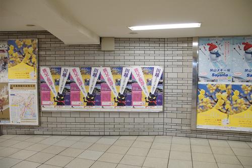 西武鉄道車内でショートアニメ(1) 秩父・長瀞_f0193056_18422515.png