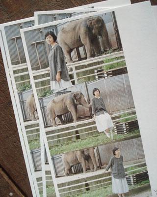 ヤンマ産業の受注会!_e0199564_17503615.jpg