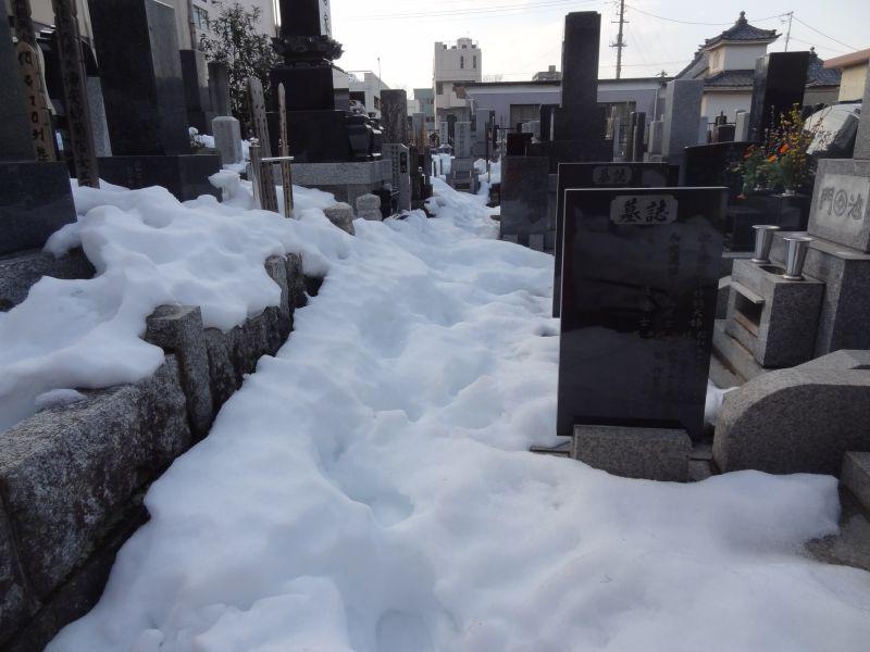 『LIBERTY』 雪かきの疲れを癒す ストロベリーチャイ_e0187286_16371715.jpg
