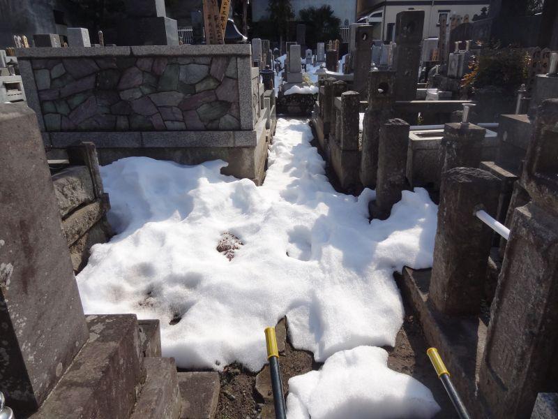『LIBERTY』 雪かきの疲れを癒す ストロベリーチャイ_e0187286_16382666.jpg