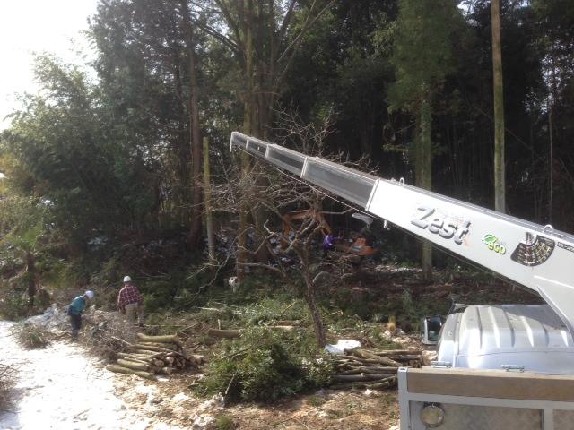ケヤキの木を切りました。_b0283089_20235499.jpg