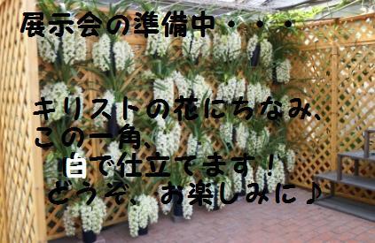 f0203094_1046187.jpg