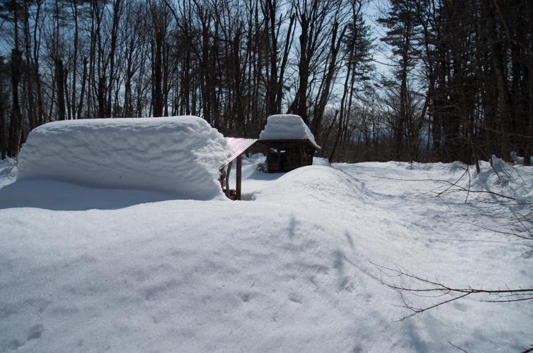 記録的大雪から9日目、自力でやっと車を出す_c0137403_21374921.jpg