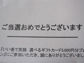 d0047107_65334.jpg