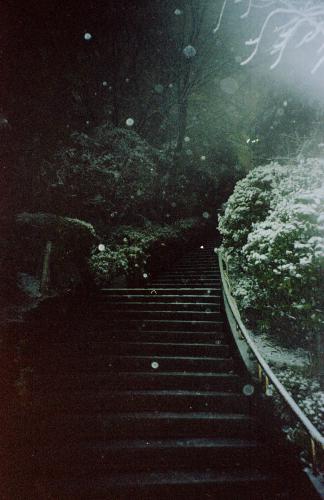 20140215 雪の日の夜_b0212922_00445973.jpg