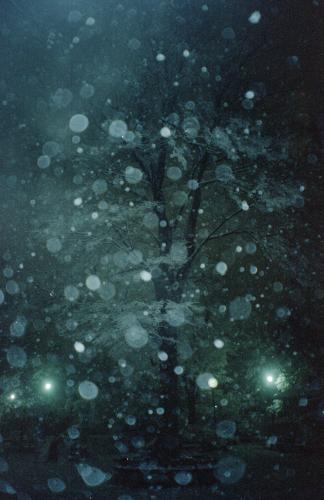 20140215 雪の日の夜_b0212922_00455155.jpg
