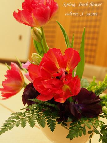 春花登場です_d0144095_23113547.jpg