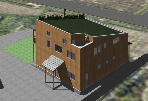 芝置屋根の家3_e0054299_13282981.jpg