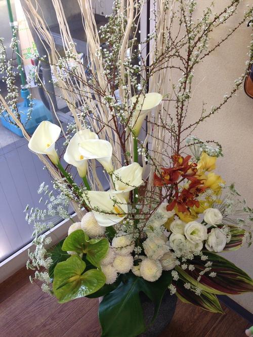 今週のお花とセール情報_a0200423_0122461.jpg