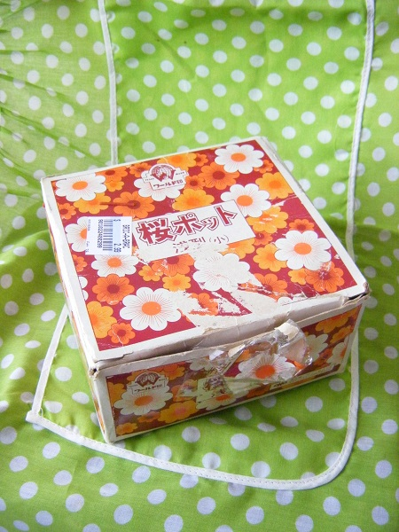 ワールド印の桜ポット*_e0122024_7555640.jpg
