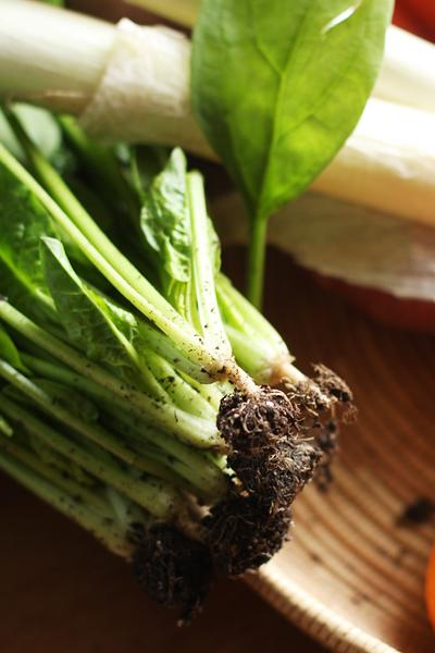 お野菜たっぷり_f0149855_1823527.jpg