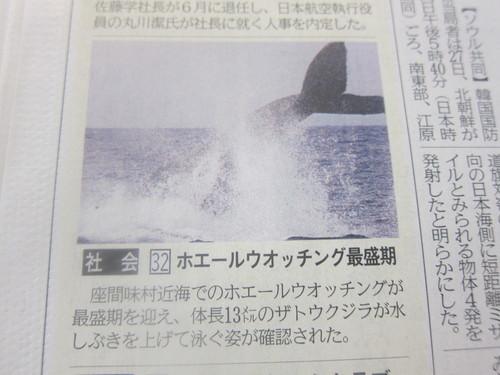 Whale watching._c0153966_175399.jpg