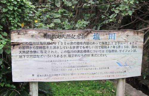 沖縄 塩川_e0200879_1194910.jpg