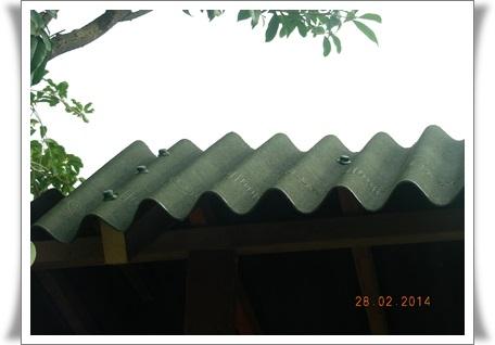 シェッドの屋根替え~^_^;_b0096584_20553245.jpg