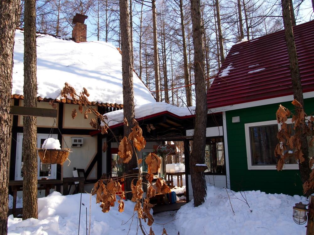 2月も最終日・・春を思わせる陽気に雪どけが進みます!_f0276498_23112951.jpg