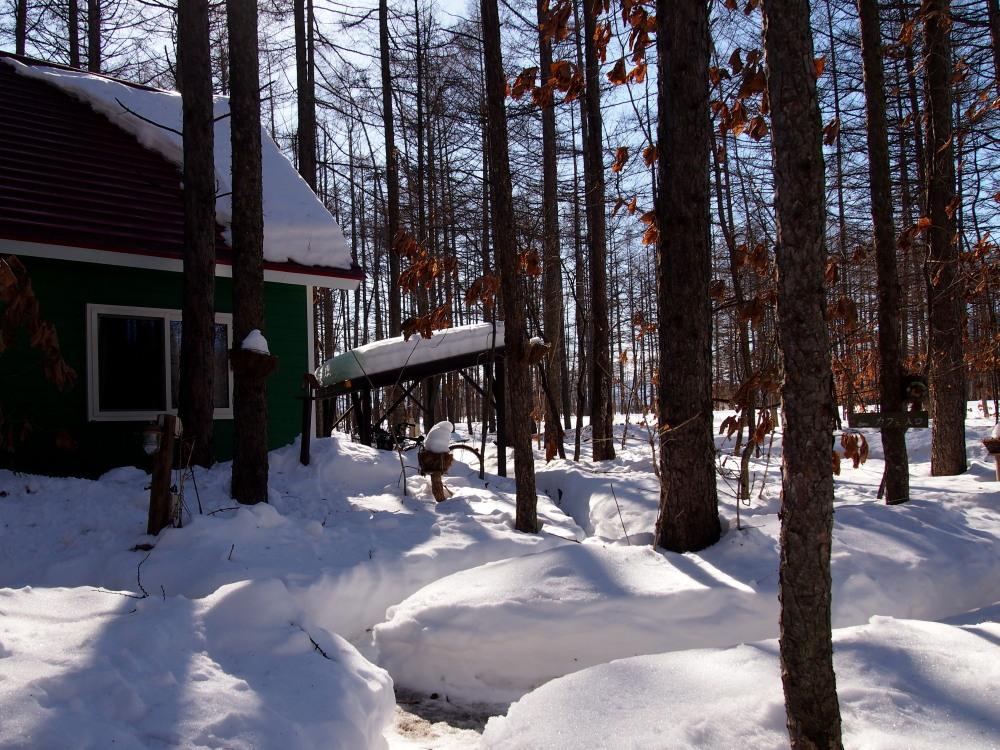 2月も最終日・・春を思わせる陽気に雪どけが進みます!_f0276498_23115231.jpg