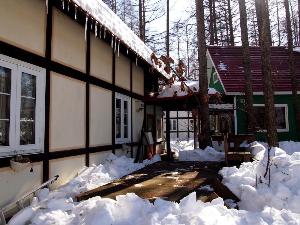 2月も最終日・・春を思わせる陽気に雪どけが進みます!_f0276498_23123077.jpg