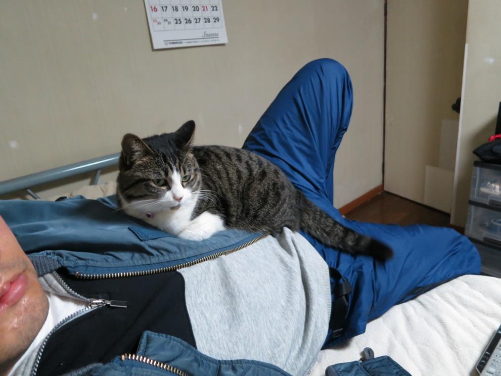 【猫】重たい・・_f0141609_2058663.jpg