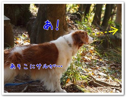 d0013149_0242587.jpg