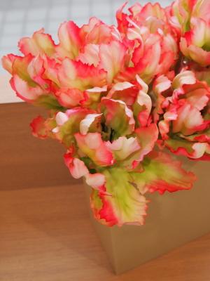 La Primavera è arrivata!_c0157501_2002026.jpg