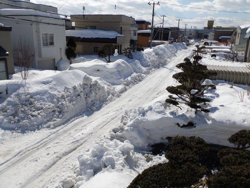 寒さは戻ってきたものの春への歩みは止まらない_c0025115_20504618.jpg
