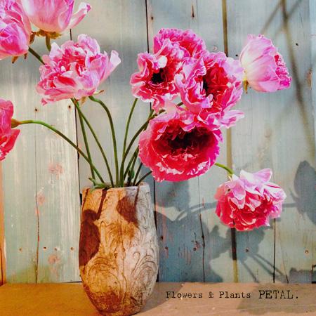 3月2日(日)ははけのおいしい朝市_d0157716_0573791.jpg