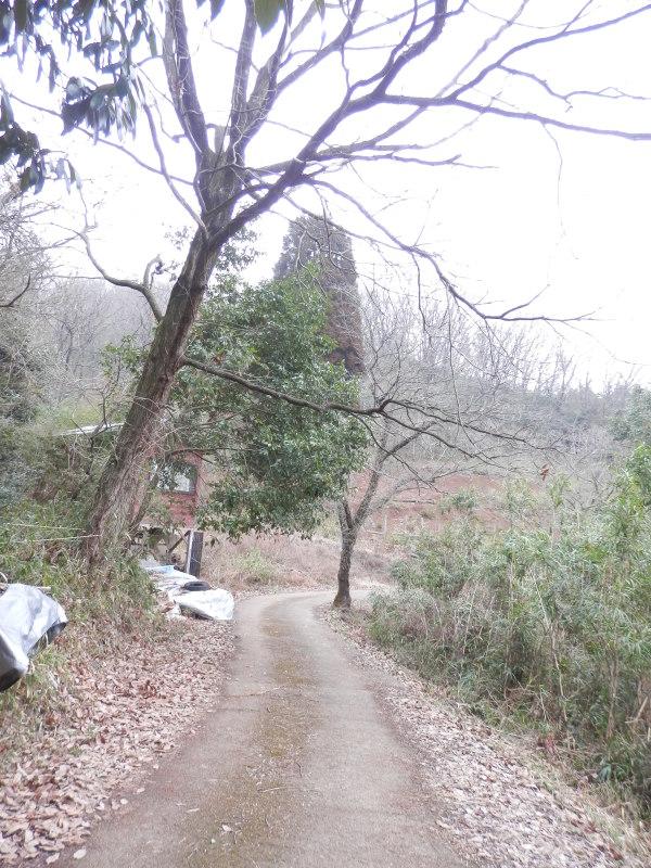 greengreenvillage日田へ~_a0125419_19372731.jpg