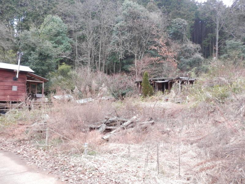 greengreenvillage日田へ~_a0125419_19411486.jpg