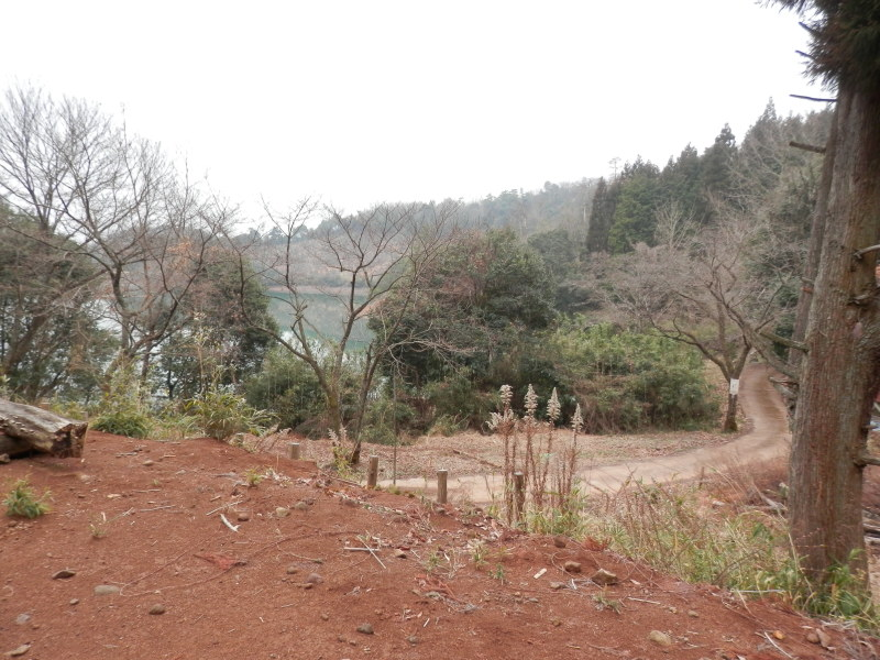 greengreenvillage日田へ~_a0125419_19474389.jpg
