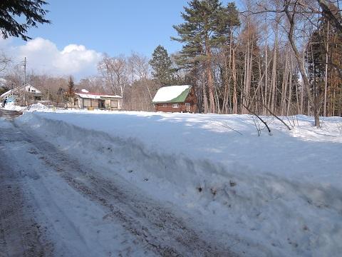大雪のその後・・・^^;_a0211886_11542051.jpg