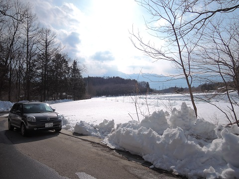 大雪のその後・・・^^;_a0211886_11574314.jpg
