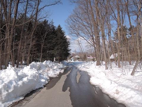 大雪のその後・・・^^;_a0211886_11592990.jpg