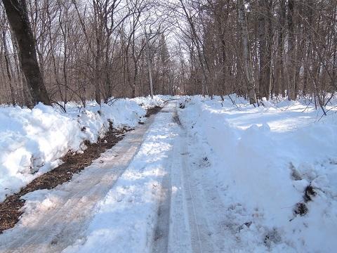 大雪のその後・・・^^;_a0211886_16573155.jpg