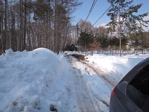 大雪のその後・・・^^;_a0211886_16591395.jpg