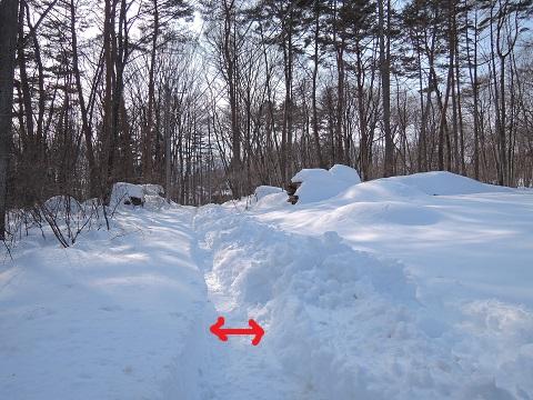 大雪のその後・・・^^;_a0211886_172147.jpg