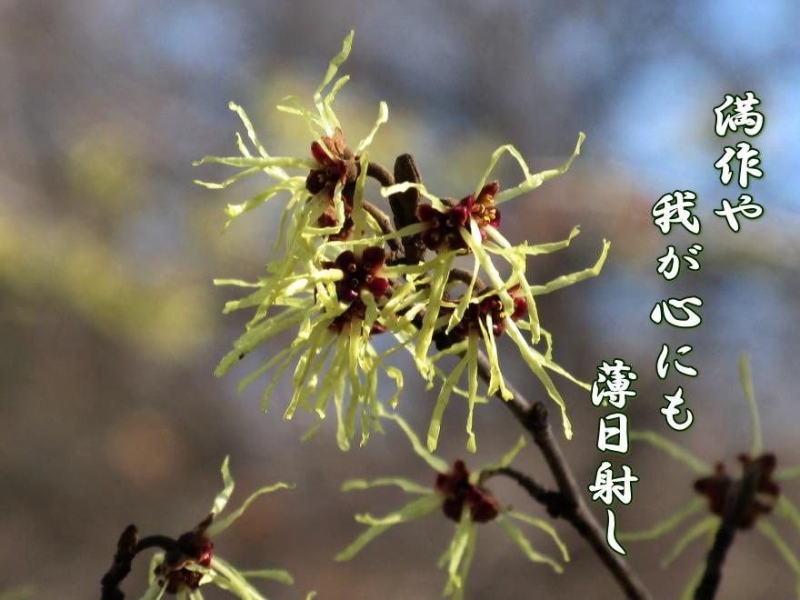 f0137096_1412067.jpg
