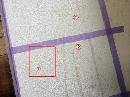 漆喰の汚れおとし_a0148909_10301746.jpg